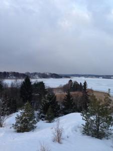 SnowyFjord