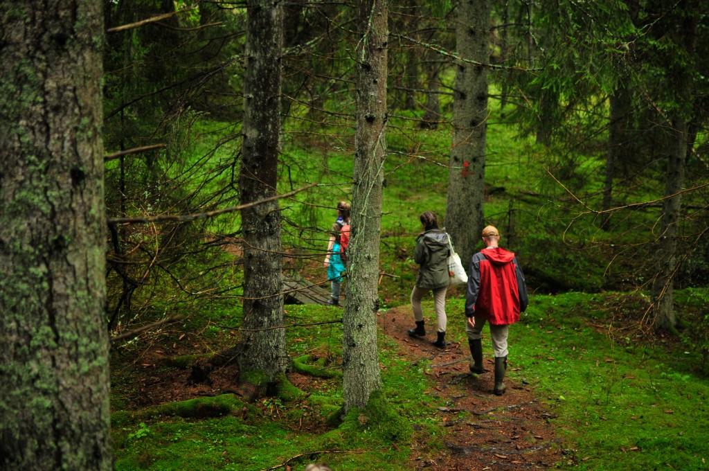 YIP 9 hike